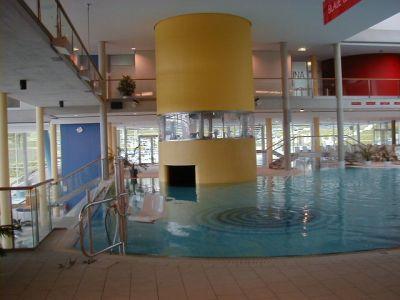 Lehner Poollift Delphin - Bild 12